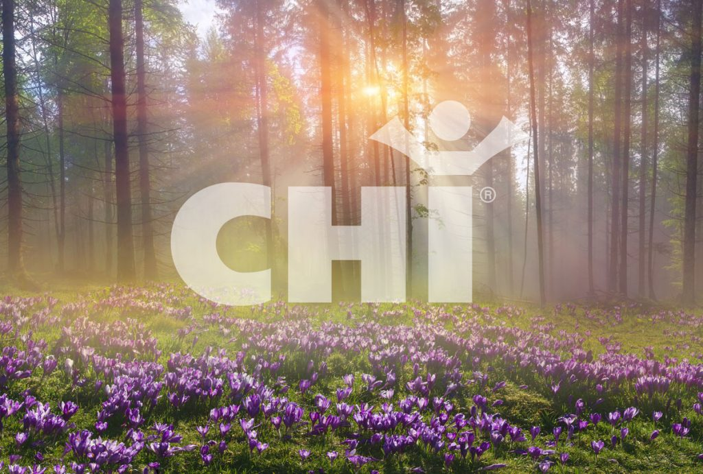 Institut New Era of Chi