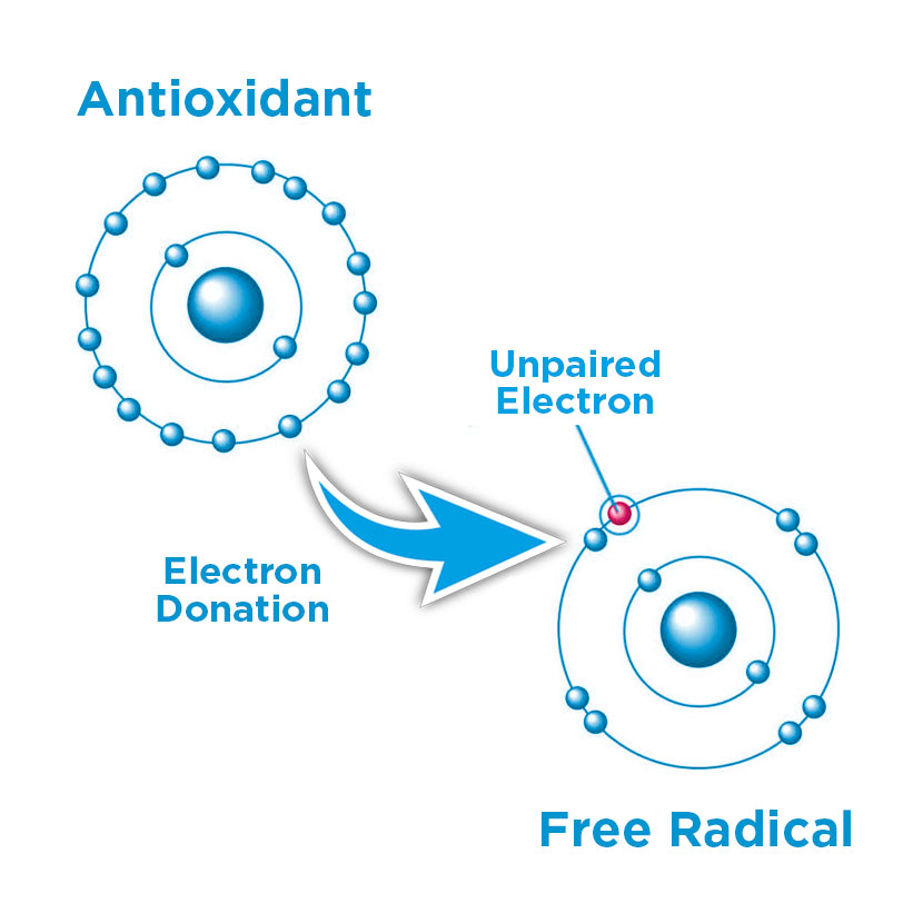 Antioxidants & Free Radicals